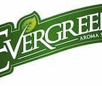 Evergreen Logo - Pustekuchen Dampfer Shop Simmern